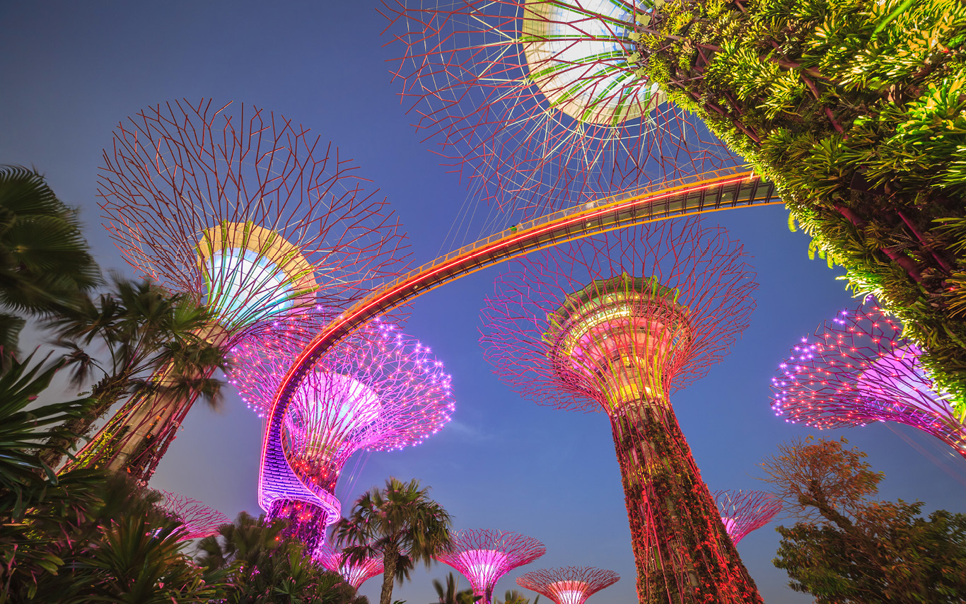 A panoramic view of Gardens by the Bay nature park in Singapore
